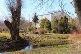Ботанический сад СПбГУ